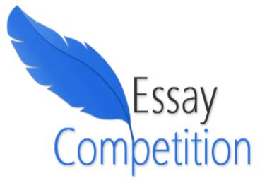 Turkish house essay contest